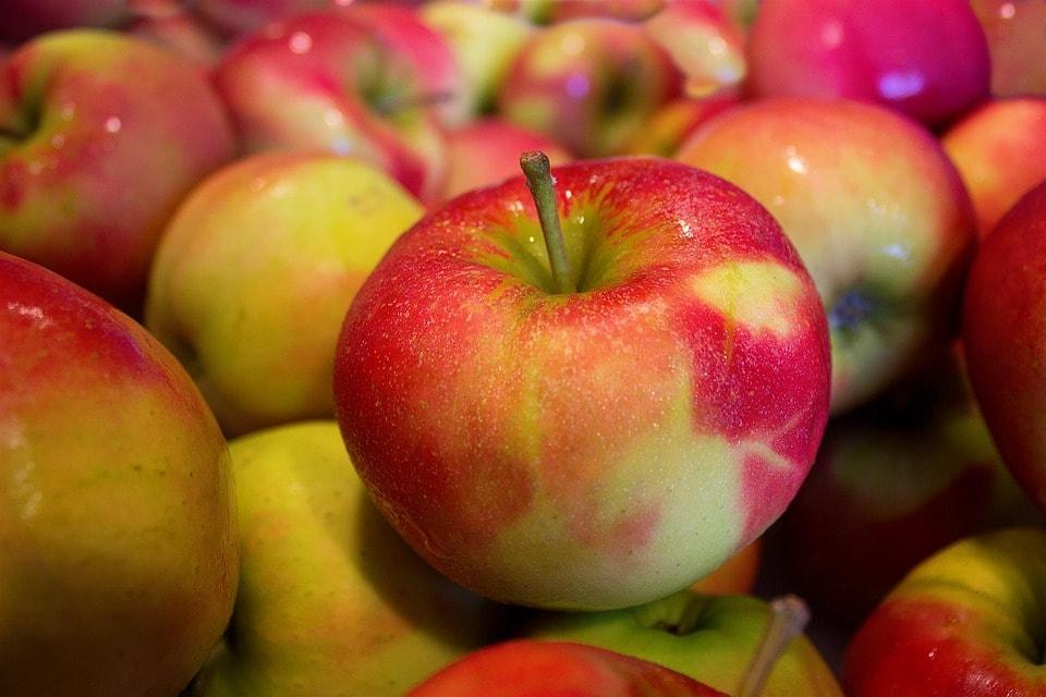 antioxidáns flavonoidok és vitaminok